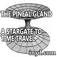 The Pineal Gland : A Stargate To Time Travel