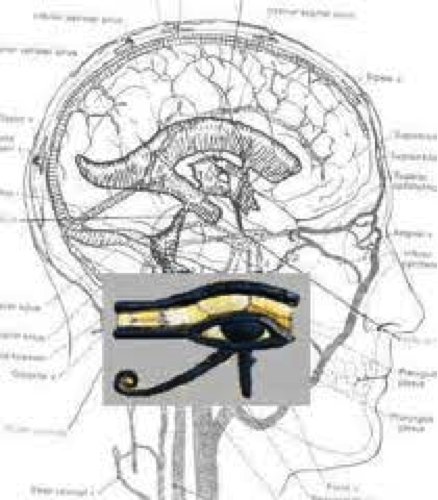 pineal gland portal of higher dimensions in5d esoteric