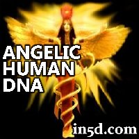 The Angelic Human DNA Template, DNA Activation, and Ascension