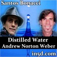 Andrew norton webber