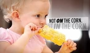 Study Finds Monsanto's GM Corn Nutritionally Dead, Highly Toxic