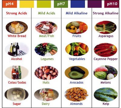 List Of Foods High In Sodium Pdf