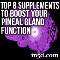 Top 8 Supplements to Boost Your Pineal Gland Function