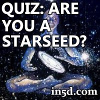are you a starseed
