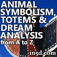 Animal Symbolism, Totems and Dream Analysis from A to Z | in5d.com | Esoteric, Spiritual and Metaphysical Database